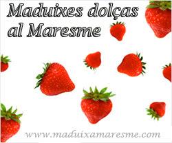 fresas en el maresma- les millors maduixes del maresme a sant Pol de Mar