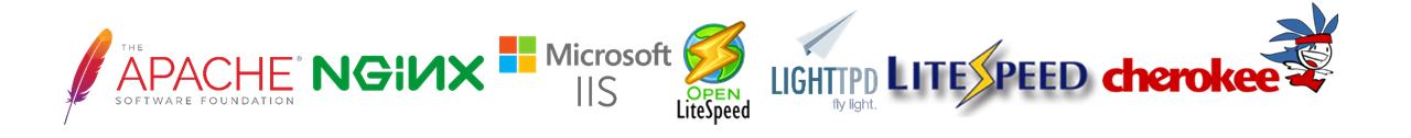 Web Server: Apache Nginx Reverse Proxy Apache LiteSpeed OpenLiteSpeed Cherokee Lighttpd IIS LAMP LEMP LNMPA L2MP LOMP LLMP WIMP WAMP