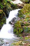 Kuzuryuu waterfalls