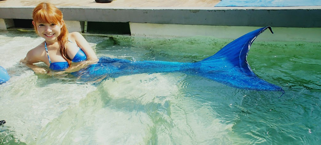 mermaid+swimming+classes+manila+ocean+park+philippines+%252810%2529 Unforgettable Mermaid Swimming Experience at Manila Ocean Park