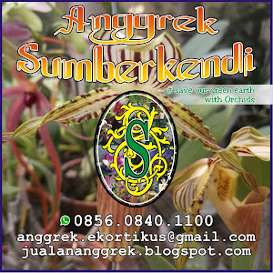 Who is Anggrek Sumberkendi?