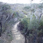 Track to Golf Links Lookout (186483)