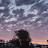 Gina q avatar image