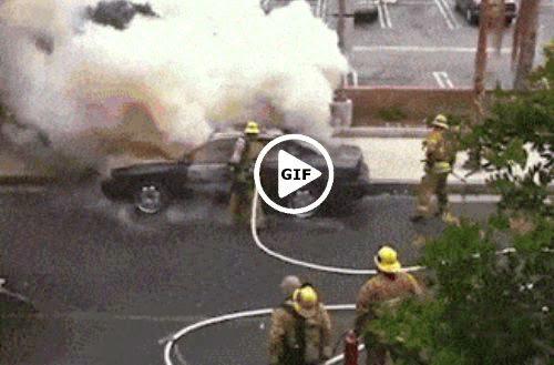 zjarrfikesi trim ne 1gallat.com