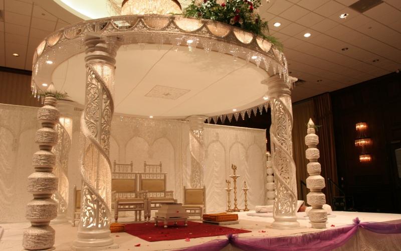 Savvy weddings nz junglespirit Images