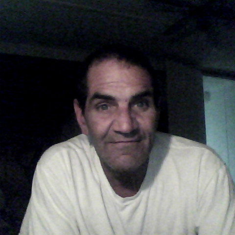 Bob David