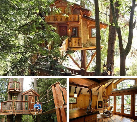 Amazing Tree Houses: Plans, Pictures, Designs & Building Ideas ... on best shelter designs, best hostel designs, best tree lights, best tree landscaping, best church designs, luxury tree houses designs, best camp designs, best cabana designs, best workshop designs, to live in treehouse designs, best umbrella designs, best fountain designs, best prison architect designs, best picnic table designs, best fishing designs, best gazebo designs, best playroom designs, best swing set designs, best sandbox designs, best waterfall designs,