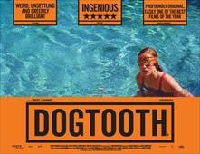 مشاهدة فيلم Dogtooth