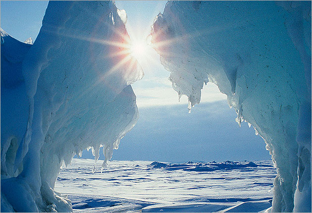 Power, Greed and the Arctic