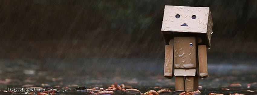 Ảnh bìa Danbo trong mưa