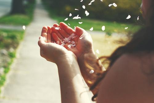 anao de jardim lygia fagundes telles:Flores, Amores e Euზ: Março 2011