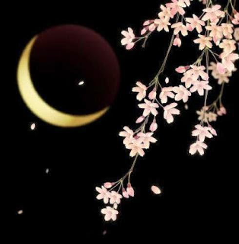 It The Flower Moon