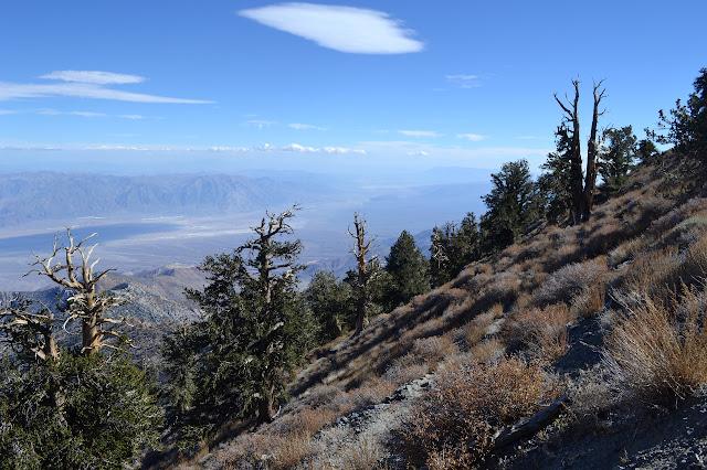 trail on steep slope