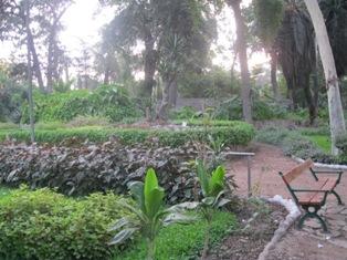 Uddes universidad democracia y desarrollo reportaje a for Guarderia el jardin san fernando