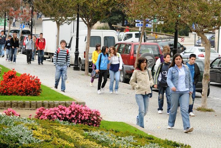 Lamego atribui bolsas de estudo a alunos do ensino superior