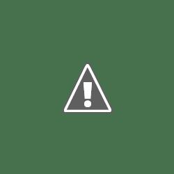 Disney's Animal Kingdom Theme Park's profile photo