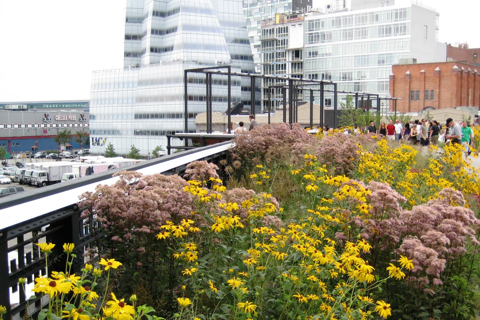 A Green Roof Is A Highly Engineered Extension Of The Roofing System That  Uses Plant Life To Meet Functional And Aesthetic Needs.