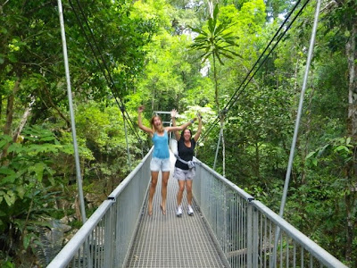 mossman gorge suspension bridge