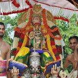 Garuda Vahana Seva - Brahmotsavam 2014 Day 3