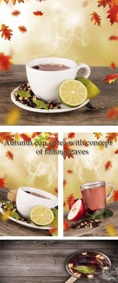 Stock Photo: Autumn cup of tea with concept of falling leaves