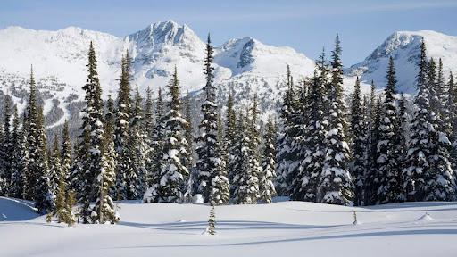 Spearhead Range, Whistler, British Columbia, Canada.jpg