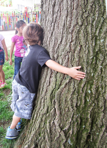 Child hugs a tree to feel it and smell it.