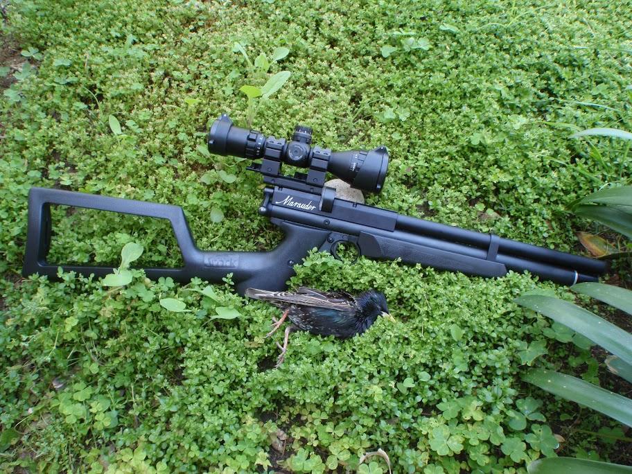 First blood with  22 Marauder Pistol - The Airgun Forum