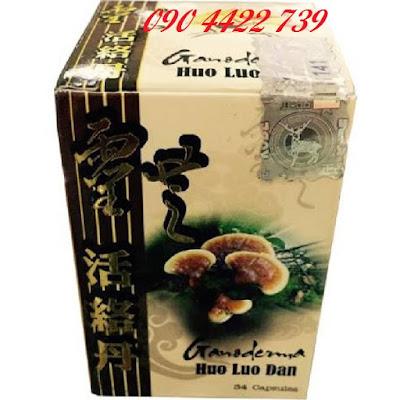 HUO LUO DAN GANODERMA - Linh Chi Hoạt Lạc Đơn