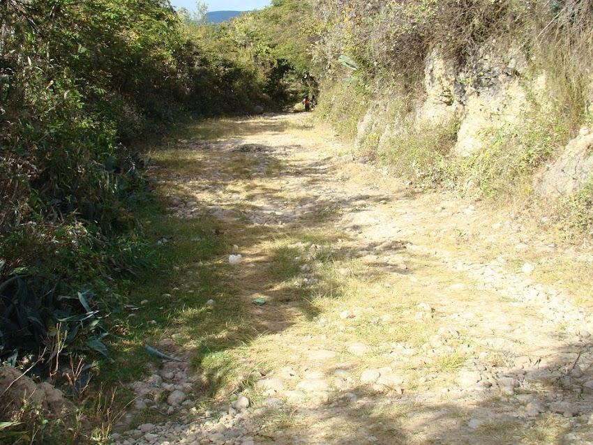 Camino del caserío el Chirimoyo - Cajabamba