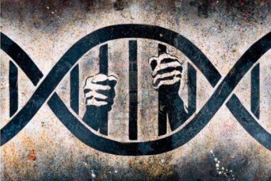 Vita, DNA, ricerca scientifica e dignità dell'uomo