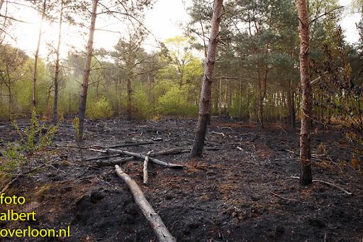 nacontrole  bosbrand Overloon 18-04-2014 (19).jpg