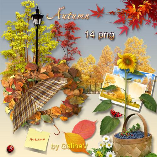 Осенний клипарт PNG