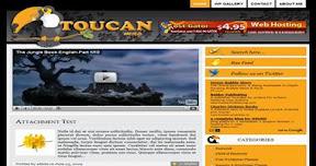 Toucan Mag