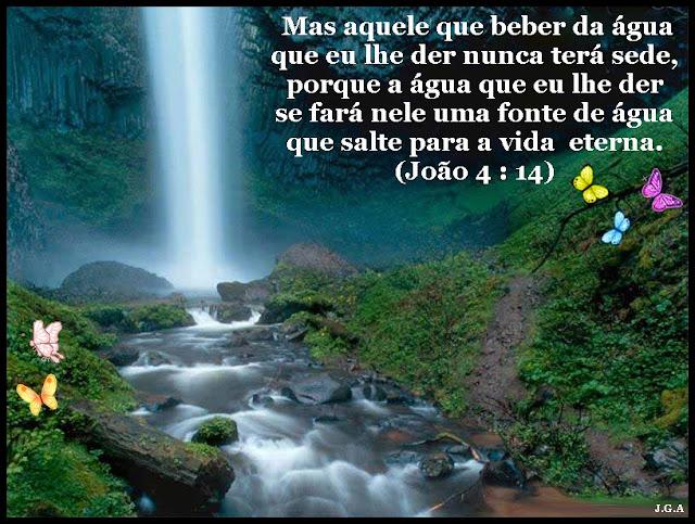 JOÃO-4-VERS-14