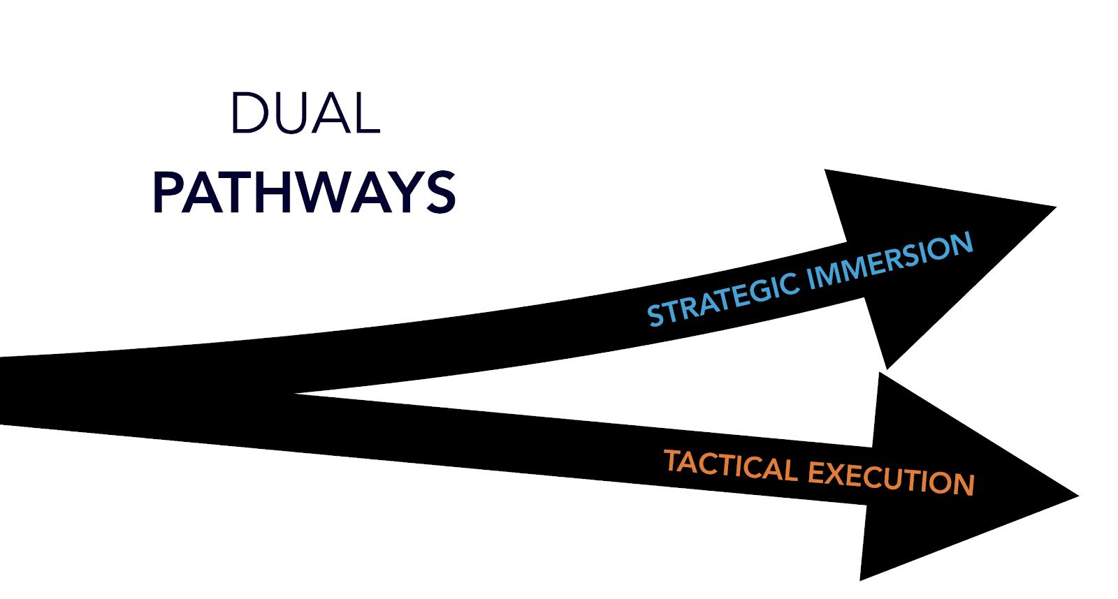 Dual pathways image