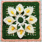 Purifying Puritans Lily Granny Square