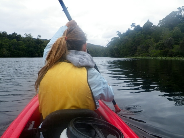 paddling the tarkine - tasmania