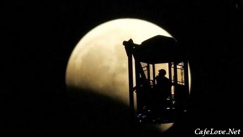 ảnh bên nhau dưới trăng