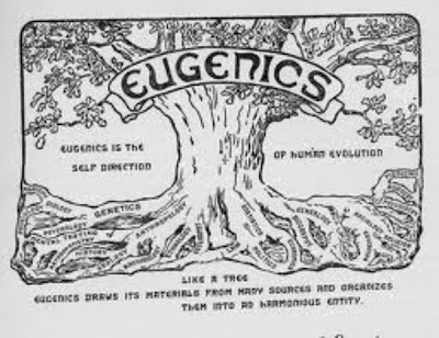 America's continued fascination with eugenic genocide