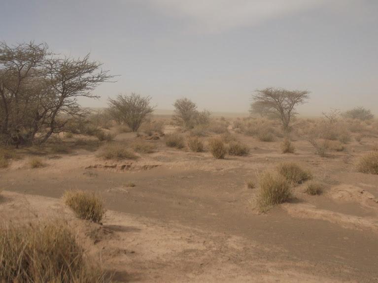 marrocos - Marrocos e Mauritãnia a Queimar Pneu e Gasolina - Página 10 DSCF1102