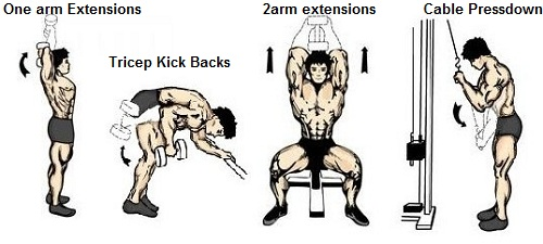 Kick Back Workout Triceps Kick Backs