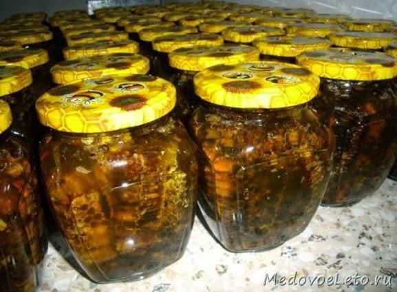 Соты с пергой, залитые мёдом