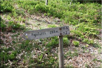 Dirección Papiturri