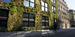 fachadas vegetales aislamiento termico