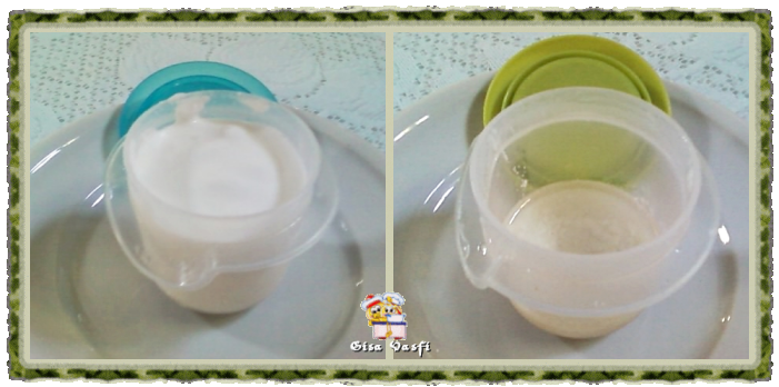 Gordura de coco 1