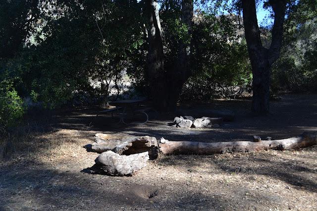 main campe site