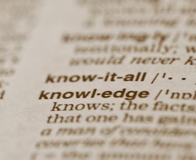 CKO, el jefe en la gestión del conocimiento dentro la organización