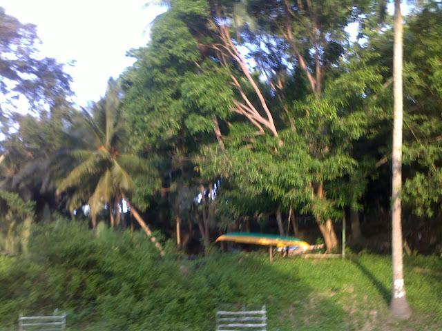 boat docked on dry land sibonga, argao, dalaguete, cebu