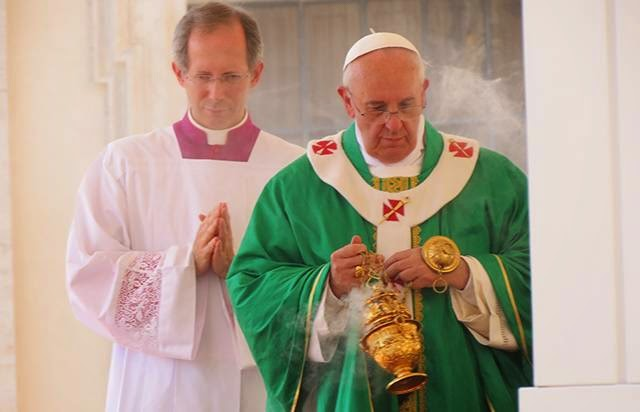 Pope's environment stance aligns with Church