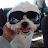 POOKIE5221 avatar image